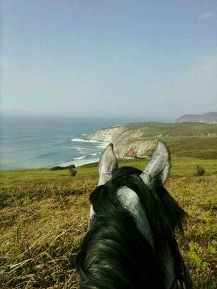 Paseos a caballo con salida desde Urduliz (Vizcaya)