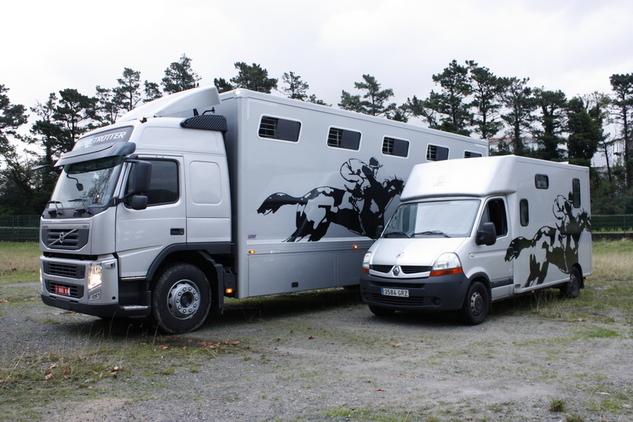 Transportes internacional de caballos