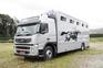 Transportes internacional de caballos en venta
