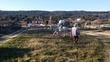 Se Vende Caballo en venta en España