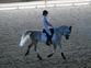 Ponis Pony Club en venta