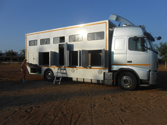 Camión Transporte Para Caballos Volvo FHB3C