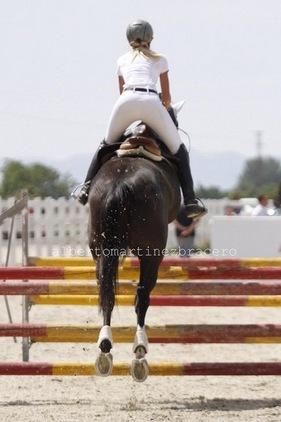 Imparto clases equitación
