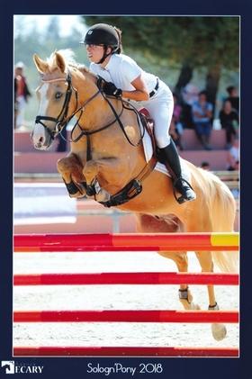 Poni C exceptional