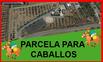 Finca para caballos a 10 mint de Málaga
