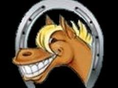 Campamentos inglés y equitación