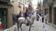Caballo cruzado de lusitano
