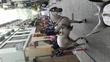 Caballo cruzado de lusitano en venta en España