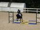 Entrenadora de caballos de salto en venta en España