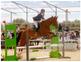 Yegua de salto CDE (Artos Z x Le Tot de Semilly) en venta en España