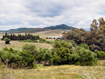 Magnificas instalaciones ecuestre en Alcala