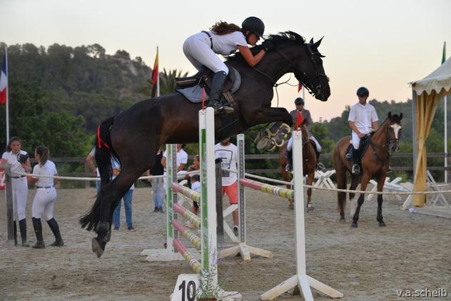 Yegua de salto con mucha calidad!