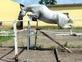 Amazing grey gelding en venta en España
