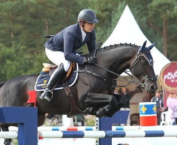A TOP LEVEL PERFORMER AVAILABLE FOR YOUR MARE