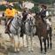 Caballos Capados en venta en España
