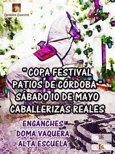 Copa Festival Patios de Córdoba