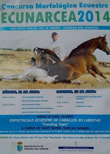 Concurso Morfológico Ecuestre Ecunarcea 2014